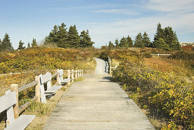 Ried State Park Beach Boardwalk On The Maine Coast Poster by Keith Webber Jr