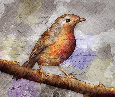 Robin On Branch Poster by Gary Bodnar