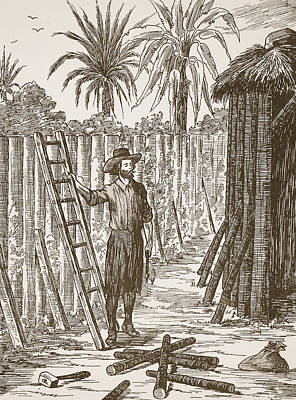 Robinson Crusoe Building His Bower Poster by English School
