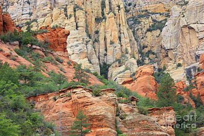 Rocks Of Sedona Poster by Carol Groenen