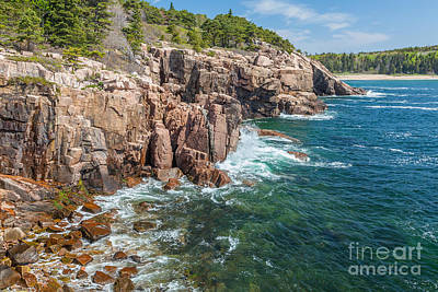 Rocky Shore In Acadia 2 Poster by Susan Cole Kelly