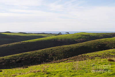 Rolling Landscape Hills Of Point Reyes National Seashore California Dsc2408 Poster by Wingsdomain Art and Photography