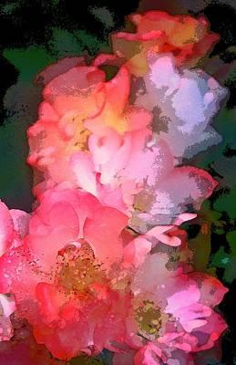 Rose 258 Poster by Pamela Cooper