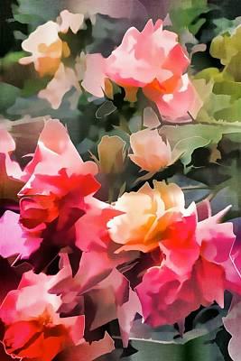 Rose 274 Poster by Pamela Cooper