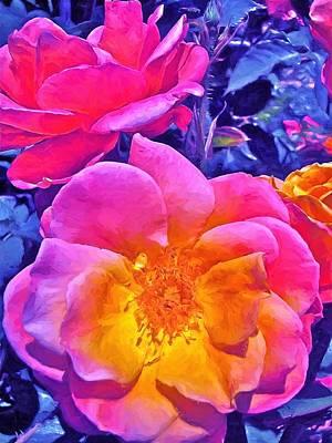 Rose 45 Poster by Pamela Cooper