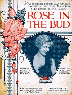 Rose In The Bud Poster by Mel Thompson