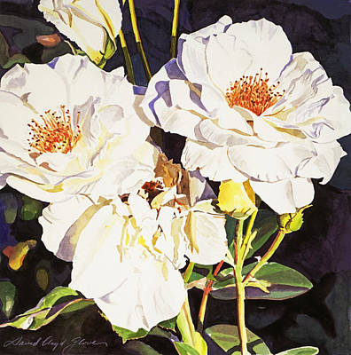 Roses Blanc Poster by David Lloyd Glover