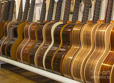 Row Of Guitars Poster by Patricia Hofmeester