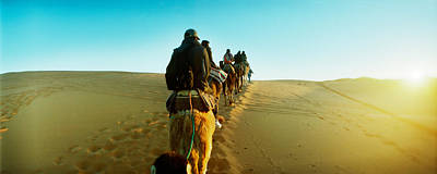 Row Of People Riding Camels Poster by Panoramic Images