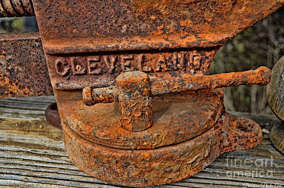 Rusty Vise 1 Poster by Debbie Portwood