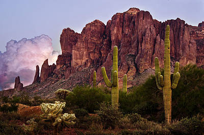 Saguaro Cactus And The Superstition Mountains Poster by Dave Dilli
