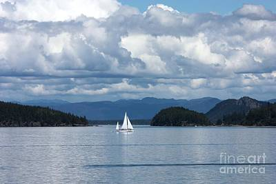 Sailing In The San Juans Poster by Carol Groenen