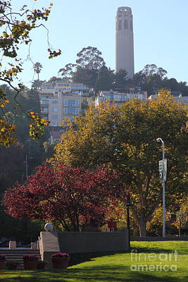 San Francisco Coit Tower At Levis Plaza 5d26216 Poster by Wingsdomain Art and Photography
