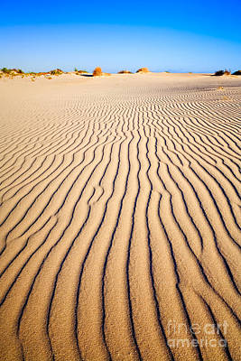 Sand Dunes At Eucla Poster by Colin and Linda McKie