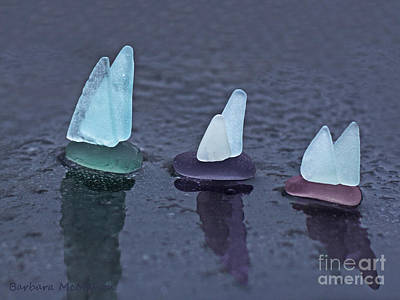 Sea Glass Flotilla Poster by Barbara McMahon