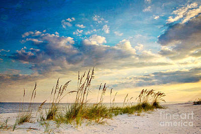 Sea Oats Sunset Poster by Joan McCool