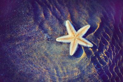 Sea Star. Memory Of The Sunny Days In Tropics Poster by Jenny Rainbow