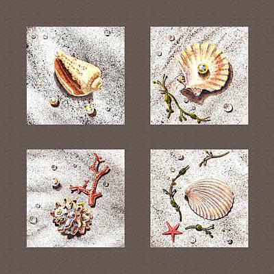 Seashell Collection IIi Poster by Irina Sztukowski