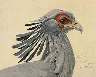 Secretary Bird Poster by Louis Agassiz Fuertes