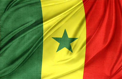 Senegal Flag Poster by Les Cunliffe