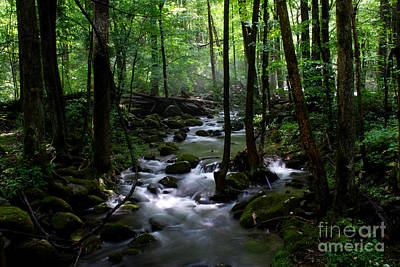 Serene Greenbrier Area Stream  Poster by Nancy Mueller