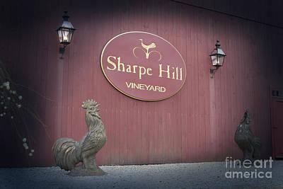 Sharpe Hill Vineyard Sign Poster by John Turek