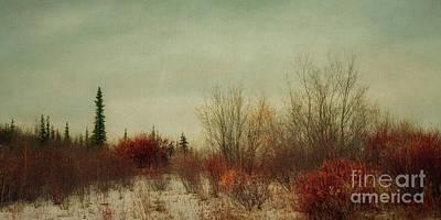 Signs Of Winter Poster by Priska Wettstein