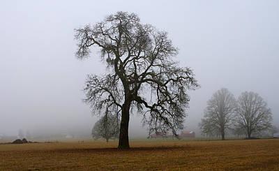 Silhouette In Fog Poster by Harold Greer