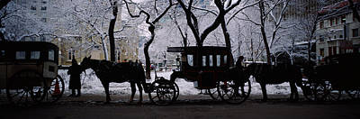 Silhouette Of Horse Drawn Carriages Poster by Panoramic Images