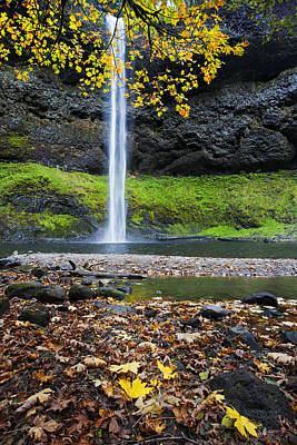 Silver Falls In Fall Poster by Quynh Ton