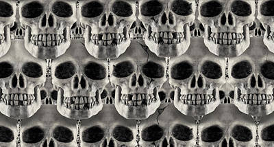 Skulls 1 Poster by Mike McGlothlen