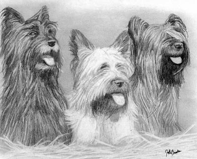 Skye Terrier Dog Poster by Olde Time  Mercantile