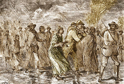 Slaves Escaping Via Underground Railroad Poster by Science Source