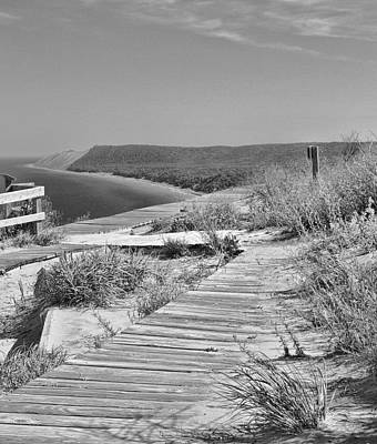 Sleeping Bear Dunes Path Black And White Poster by Dan Sproul