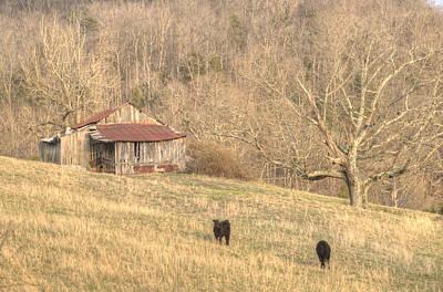 Smoky Mountain Barn 8 Poster by Douglas Barnett