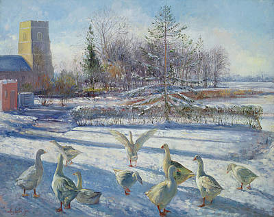 Snow Geese, Winter Morning Poster by Timothy Easton