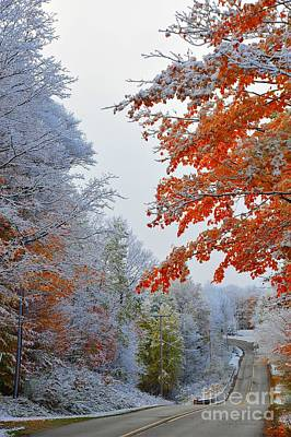 Snow In Autumn Poster by Terri Gostola