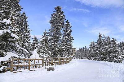 Snow Path Poster by Evelina Kremsdorf