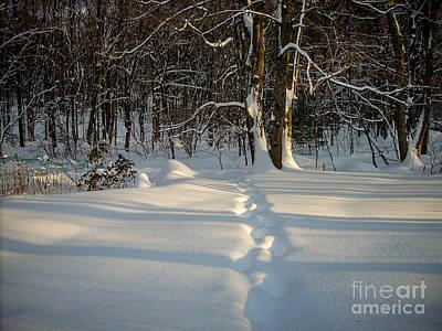 Snow Path Poster by Randi Shenkman