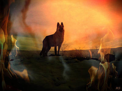 Solar Maximum - Earth Ends In Fire? Poster by Absinthe Art By Michelle LeAnn Scott