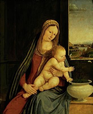 Solario Solari Andrea, Madonna Poster by Everett