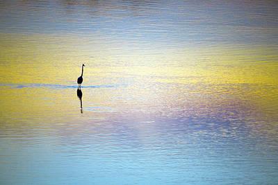 Solitude - Looking Inwards Poster by Athul Krishnan