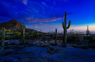 Sonoran Desert Saguaro Cactus Poster by Scott McGuire