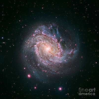 Southern Pinwheel Galaxy M83 Poster by Science Source