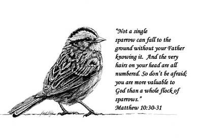 Sparrow Drawing With Scripture Poster by Janet King