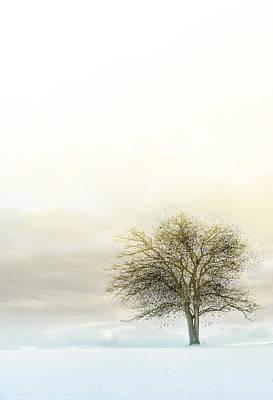 Splatter Tree Poster by Michael Huddleston