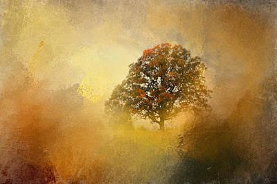 Splendor Poster by Jai Johnson