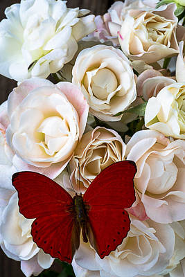 Spray Roses And Red Butterfly Poster by Garry Gay