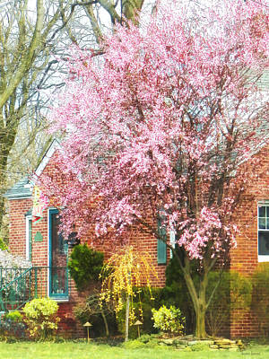 Spring - Cherry Tree By Brick House Poster by Susan Savad