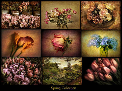 Spring Collection Poster by Jessica Jenney